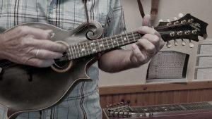 Best Beginner Mandolin – Detailed Reviews